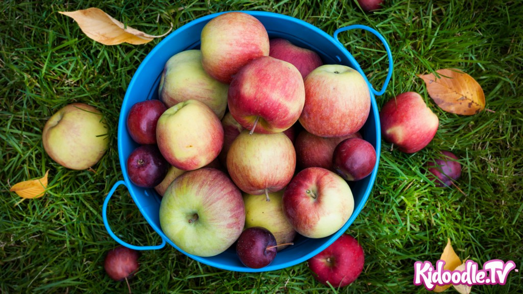 Apple Recipe Roundup - KidoodleTV Blog