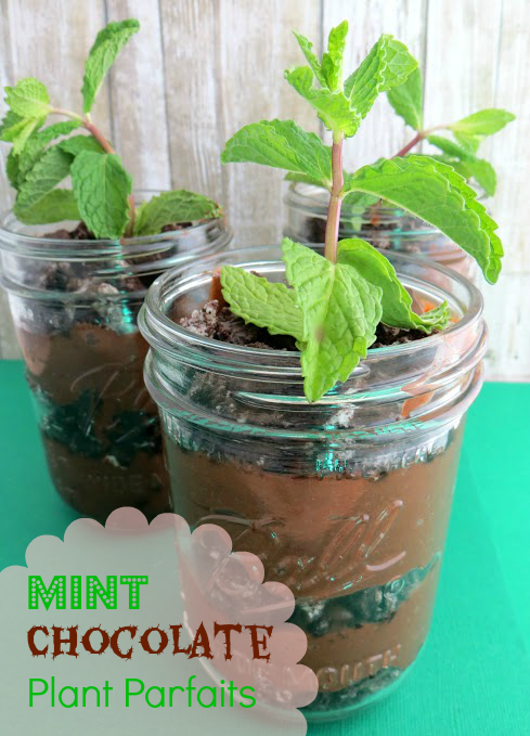 Mint-Chocolate-Plant-Parfaits